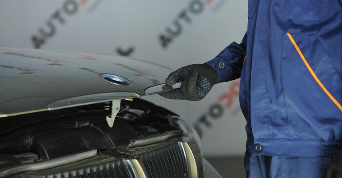 Kaip nuimti BMW 3 SERIES 325i 2.5 2008 Amortizatorius - nesudėtingos internetinės instrukcijos