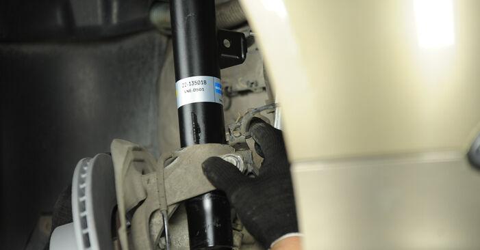 BMW 3 SERIES 320i 2.0 Amortizatorius keitimas: internetiniai gidai ir vaizdo pamokos