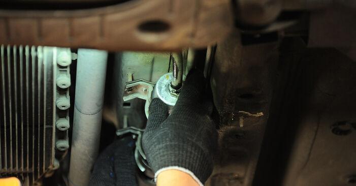 Zweckdienliche Tipps zum Austausch von Kraftstofffilter beim BMW X3 (E83) xDrive20d 2.0 2008