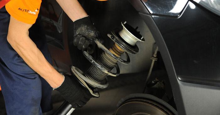 Wie Federn BMW X3 (E83) 3.0 d 2004 austauschen - Schrittweise Handbücher und Videoanleitungen