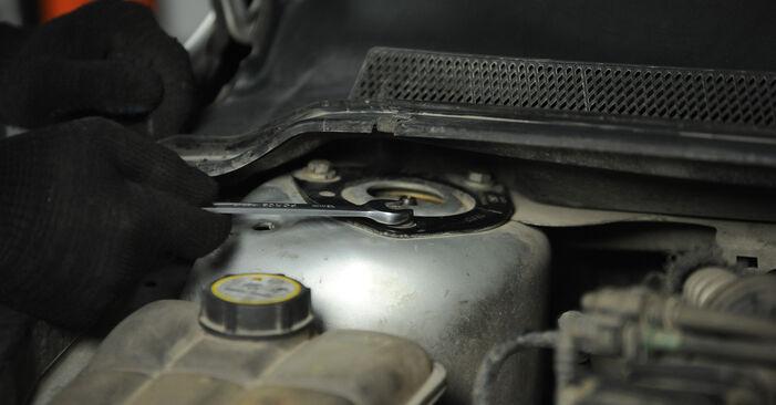 Zweckdienliche Tipps zum Austausch von Federn beim FORD Focus II Limousine (DB_, FCH, DH) 1.6 2009
