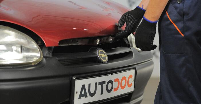 Schritt-für-Schritt-Anleitung zum selbstständigen Wechsel von Opel Corsa S93 1996 1.5 TD (F08, F68, M68) Luftfilter