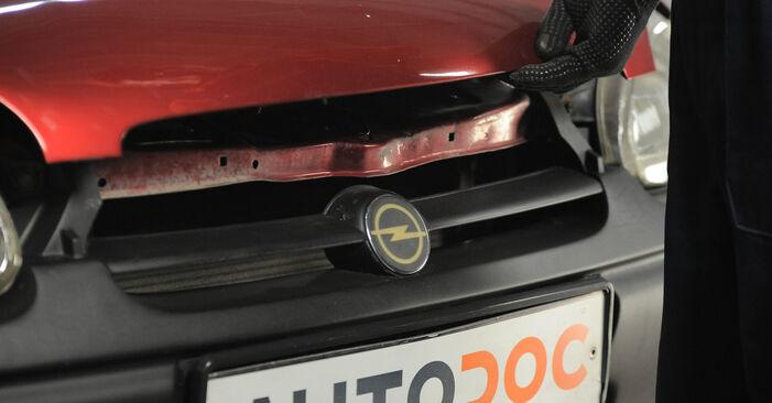 Så lång tid tar det att byta Fjäderbenslagring på Opel Corsa S93 2001 – informativ PDF-manual