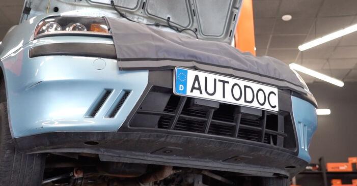 Ölfilter Fiat Punto 188 1.3 JTD 16V 2001 wechseln: Kostenlose Reparaturhandbücher