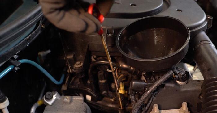 Wie schwer ist es, selbst zu reparieren: Ölfilter Fiat Punto 188 1.4 2005 Tausch - Downloaden Sie sich illustrierte Anleitungen