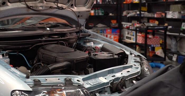 Austauschen Anleitung Ölfilter am Fiat Punto 188 2009 1.2 60 selbst