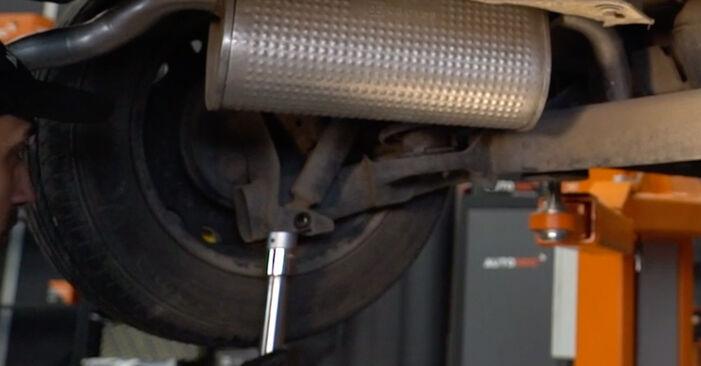 Sostituzione di FIAT PUNTO 1.9 DS 60 Molla Ammortizzatore: guide online e tutorial video