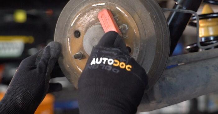 Sostituendo Molla Ammortizzatore su Fiat Punto 188 2009 1.2 60 da solo