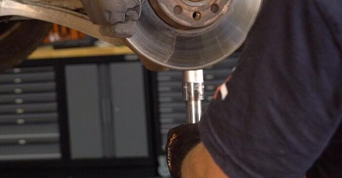 Zweckdienliche Tipps zum Austausch von Federn beim VW PASSAT Variant (3B6) 1.9 TDI 4motion 2002