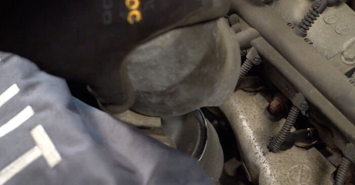 How hard is it to do yourself: Oil Filter replacement on Opel Corsa C 1.7 DI (F08, F68) 2006 - download illustrated guide