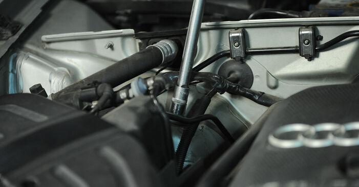 A4 Limousine (8E2, B6) 1.6 2001 2.0 Federn - Handbuch zum Wechsel und der Reparatur eigenständig