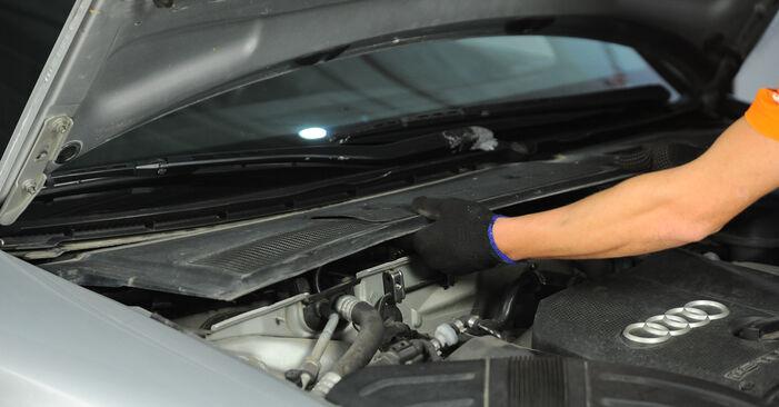 Schritt-für-Schritt-Anleitung zum selbstständigen Wechsel von Audi A4 b6 2003 1.6 Federn