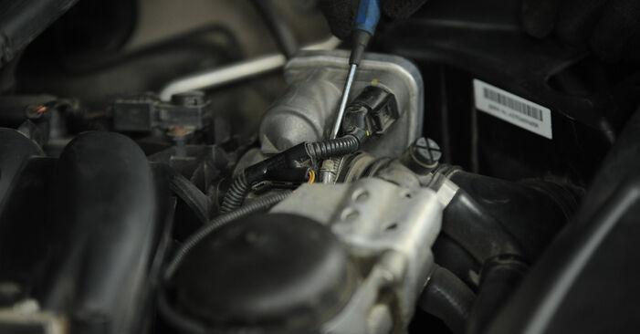 Wie Luftfilter BMW 3 Limousine (E90) 320i 2.0 2007 austauschen - Schrittweise Handbücher und Videoanleitungen