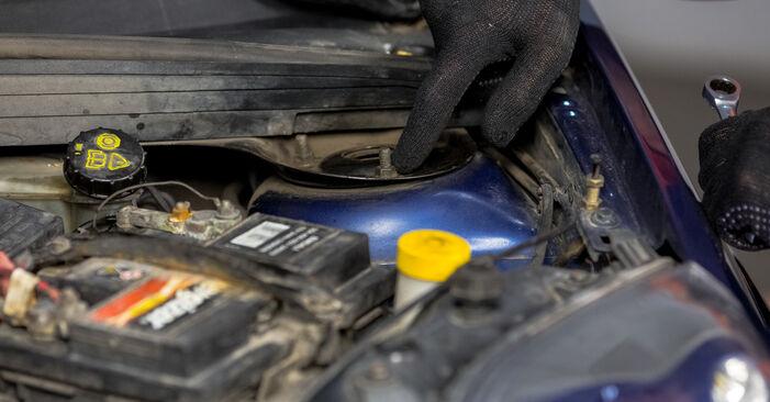 Consigli passo-passo per la sostituzione del fai da te Ford Fiesta V jh jd 2004 ST150 2.0 Supporto Ammortizzatore
