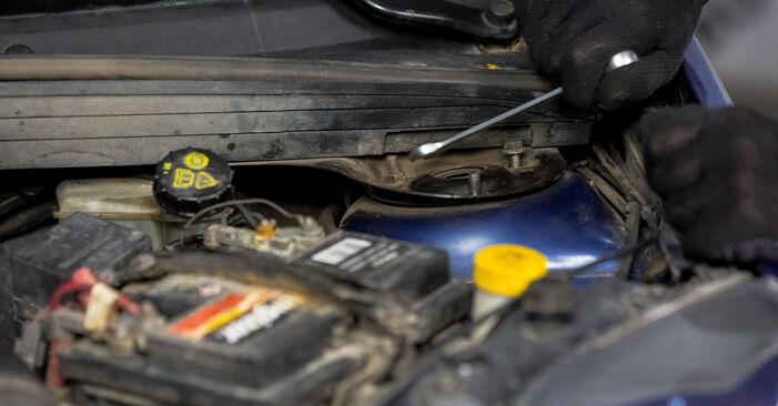 Sostituire Supporto Ammortizzatore su FORD Fiesta Mk5 Hatchback (JH1, JD1, JH3, JD3) 1.3 2005 non è più un problema con il nostro tutorial passo-passo