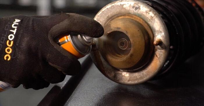 Fiesta Mk5 Hatchback (JH1, JD1, JH3, JD3) ST150 2.0 2002 Supporto Ammortizzatore manuale di officina di ricambio fai da te