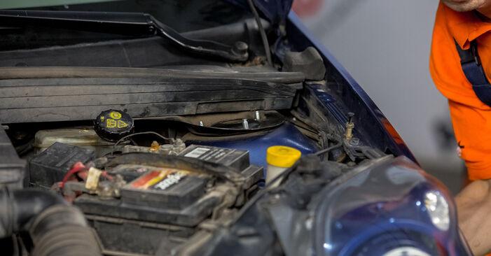 Come cambiare Supporto Ammortizzatore su Ford Fiesta V jh jd 2001 - manuali PDF e video gratuiti