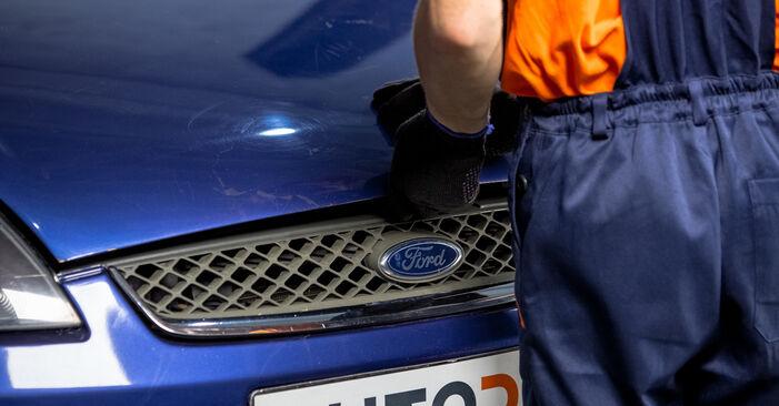 Ford Fiesta V jh jd 1.4 16V 2003 Supporto Ammortizzatore sostituzione: manuali dell'autofficina