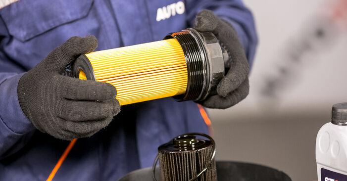 Wie lange benötigt das Auswechseln der Teile: Ölfilter beim BMW E53 2000 - Detailliertes PDF-Tutorial