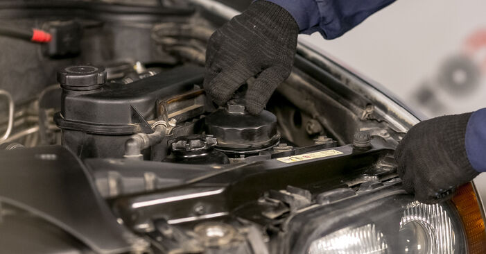 Byt Oljefilter på BMW E53 2002 3.0 d på egen hand
