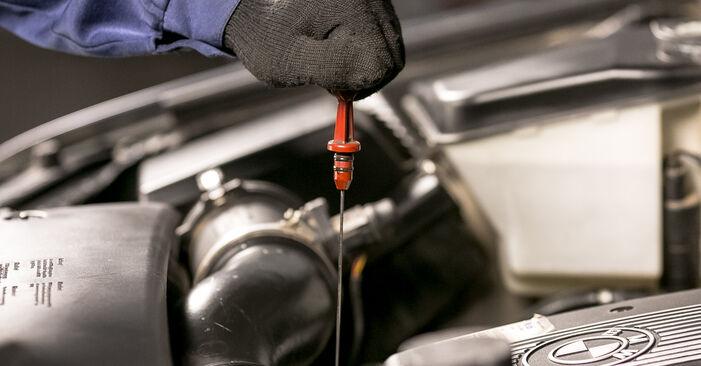 Så byter du Oljefilter på BMW X5 (E53) 2005: ladda ned PDF-manualer och videoinstruktioner