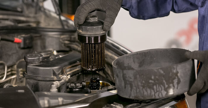 Byt Oljefilter på BMW X5 (E53) 4.6 is 2003 själv