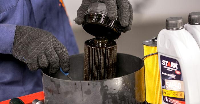 Wie man Ölfilter beim BMW X5 (E53) 2005 auswechselt – Downloaden Sie sich PDF-Tutorials und Videoanleitungen herunter