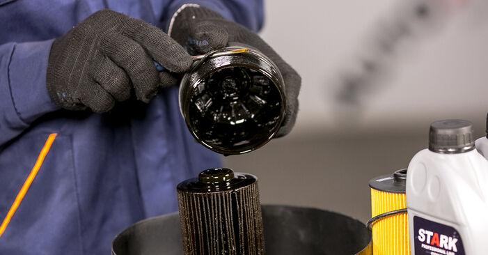 Wie problematisch ist es, selber zu reparieren: Ölfilter beim BMW E53 3.0 i 2006 auswechseln – Downloaden Sie sich bebilderte Tutorials
