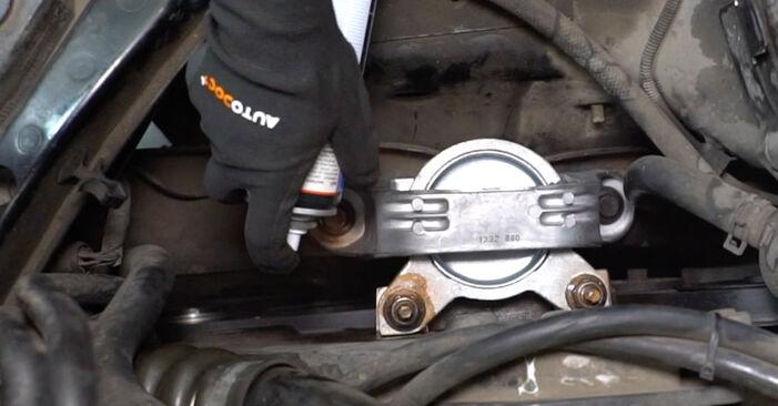 Ford Focus DAW 1.8 Turbo DI / TDDi 2000 Motorophæng udskiftning: gratis værksteds manualer