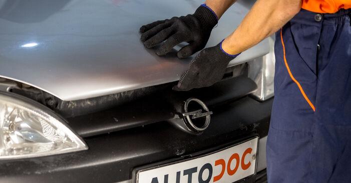 Schritt-für-Schritt-Anleitung zum selbstständigen Wechsel von Fiat Punto 188 2012 1.9 JTD Luftfilter