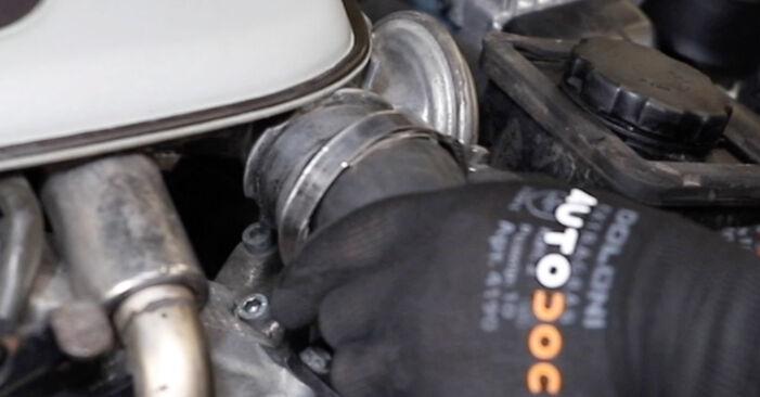 Hoe Thermostaat BMW 5 Touring (E39) 1998 vervangen - advies en uitleg