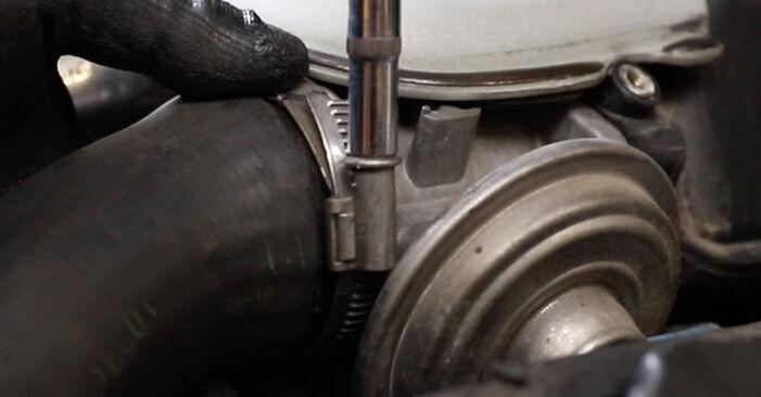 Stapsgewijze aanbevelingen om zelf BMW E39 Touring 1999 520i 2.2 Thermostaat vervangen