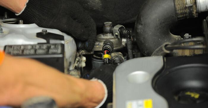 Wie Kraftstofffilter Hyundai Santa Fe cm 2.2 CRDi 4x4 2005 tauschen - Kostenlose PDF- und Videoanleitungen