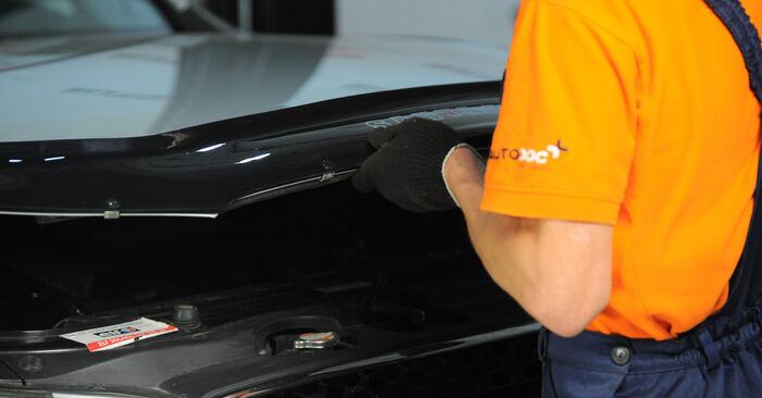 Stoßdämpfer Ihres Hyundai Santa Fe cm 2.2 CRDi GLS 4x4 2005 selbst Wechsel - Gratis Tutorial