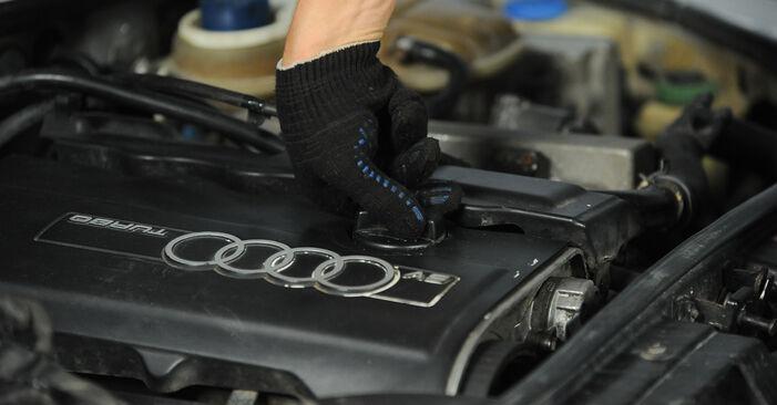 Pakāpeniski ieteikumi patstāvīgai Audi A4 B5 Avant 1999 1.8 T quattro Eļļas filtrs nomaiņai