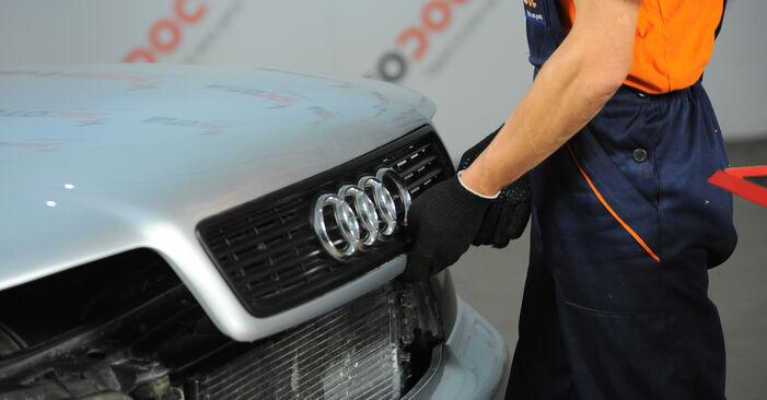 Cik grūti ir veikt Eļļas filtrs nomaiņu Audi A4 B5 Avant 2.5 TDI 2000 - lejupielādējiet ilustrētu ceļvedi