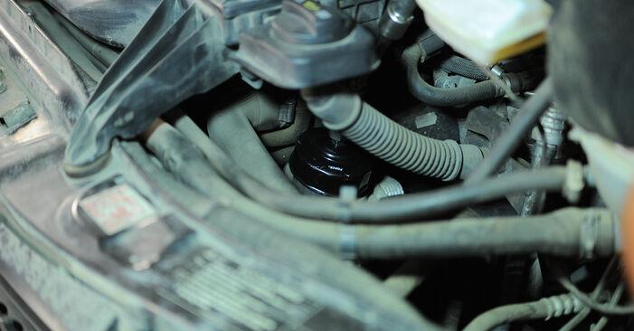 Cik ilgu laiku aizņem nomaiņa: Mercedes Vito W639 2011 Eļļas filtrs - informatīva PDF rokasgrāmata