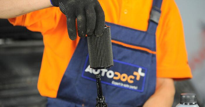 Patstāvīga Mercedes Vito W639 2013 115 CDI 2.2 Eļļas filtrs nomaiņa