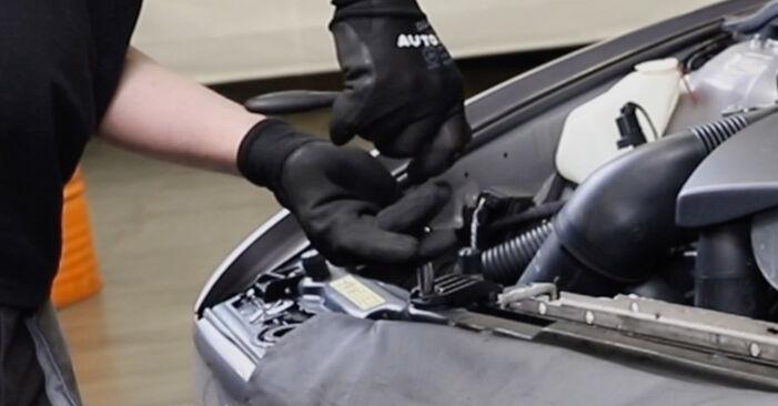Schritt-für-Schritt-Anleitung zum selbstständigen Wechsel von BMW E39 Touring 1999 520i 2.2 Kühler