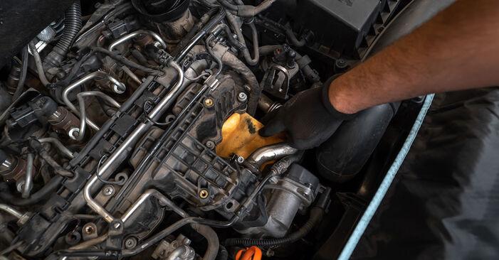 Wechseln Ölfilter am VW TOURAN (1T3) 1.4 TSI EcoFuel 2013 selber