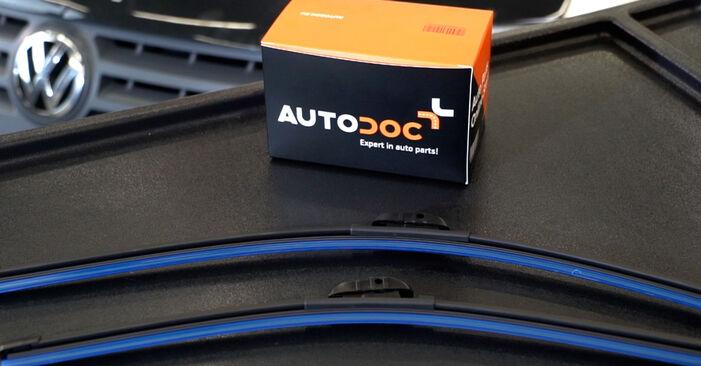 VW Caddy 3 1.6 TDI 2006 Valytuvo gumelė keitimas: nemokamos remonto instrukcijos