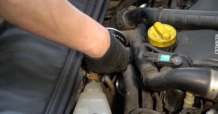 Cambio Filtro de Aceite en RENAULT Clio III Hatchback (BR0/1, CR0/1) 1.4 16V 2009 ya no es un problema con nuestro tutorial paso a paso