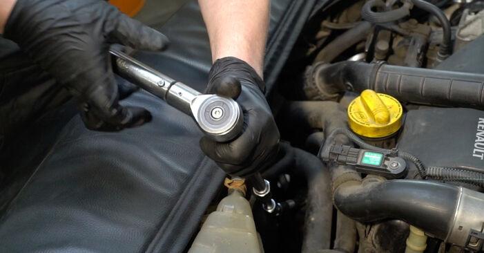 Cómo cambiar Filtro de Aceite en un Renault Clio 3 2005 - Manuales en PDF y en video gratuitos