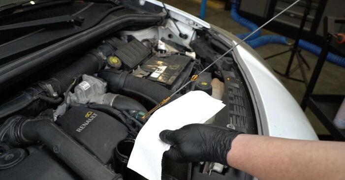 Cómo cambiar Filtro de Aceite en un RENAULT Clio III Hatchback (BR0/1, CR0/1) 2007 - consejos y trucos
