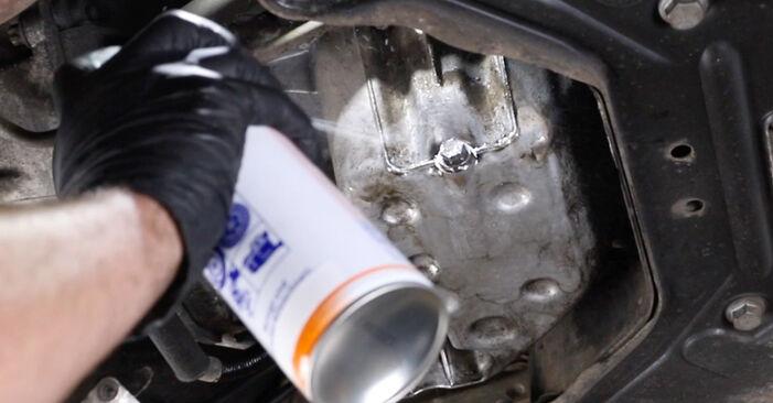Стъпка по стъпка препоруки за самостоятелна смяна на Mercedes W211 2007 E 280 CDI 3.0 (211.020) Маслен филтър