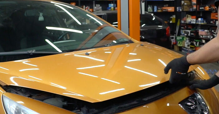 Wie man Ölfilter am Peugeot 207 WA 2006 ersetzt - Kostenfreie PDF- und Videotipps