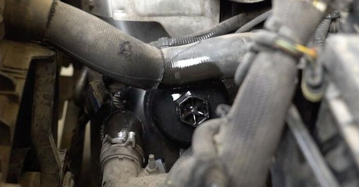 Wie lange braucht der Teilewechsel: Ölfilter am Peugeot 207 WA 2014 - Einlässliche PDF-Wegleitung