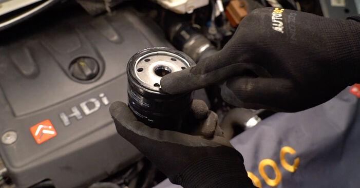 Schritt-für-Schritt-Anleitung zum selbstständigen Wechsel von Citroen Xsara Picasso 2001 1.6 16V Ölfilter