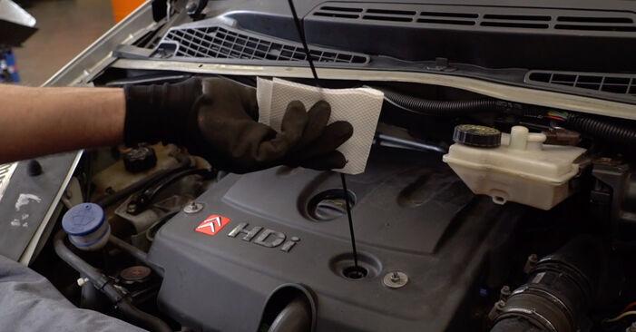 Ölfilter am CITROËN XSARA PICASSO (N68) 2.0 16V 2002 wechseln – Laden Sie sich PDF-Handbücher und Videoanleitungen herunter