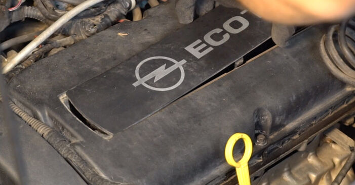Zündkerzen Opel Zafira B 1.7 CDTI (M75) 2007 wechseln: Kostenlose Reparaturhandbücher